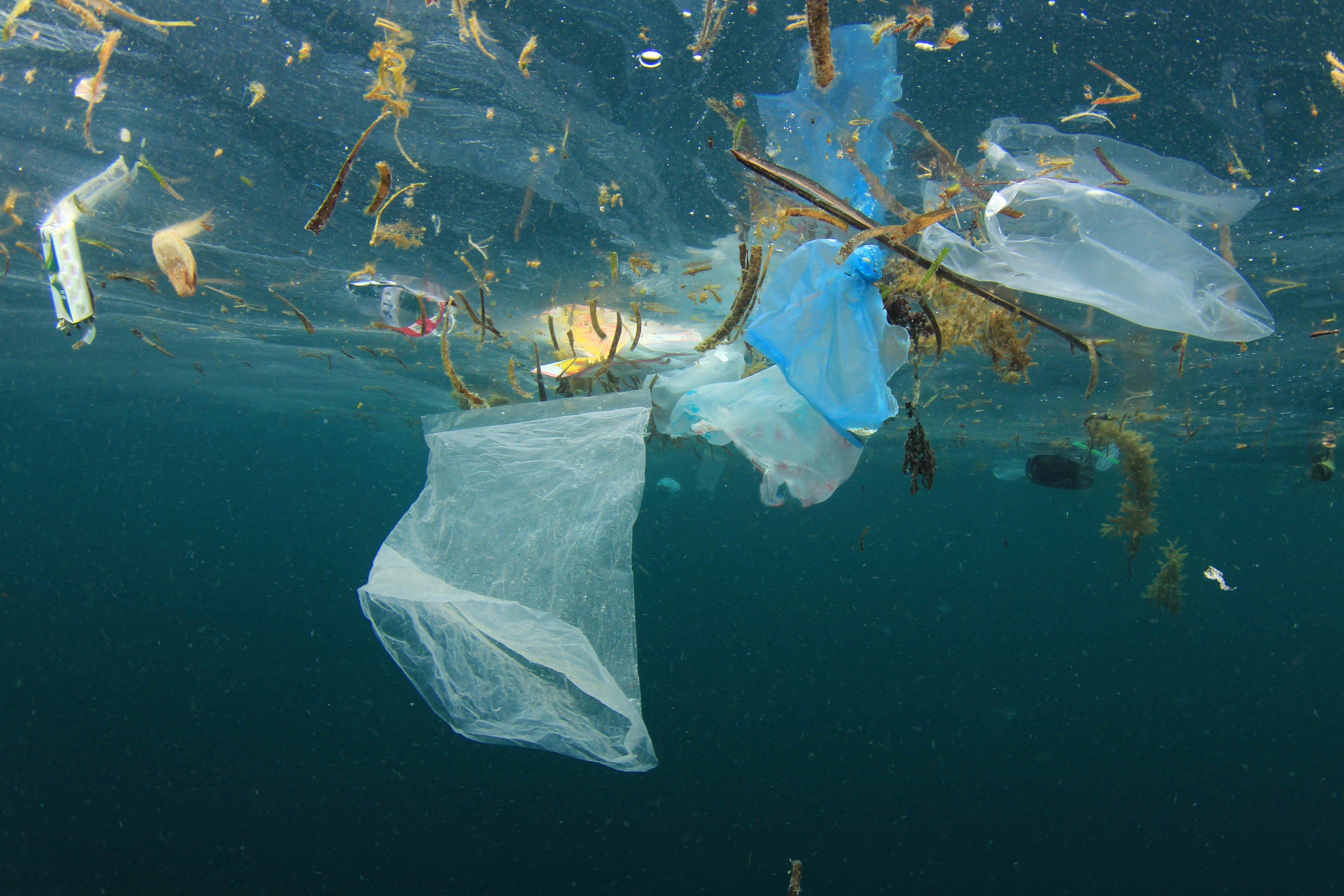 Medelhavet drunknar i plast Världsnaturfonden WWF