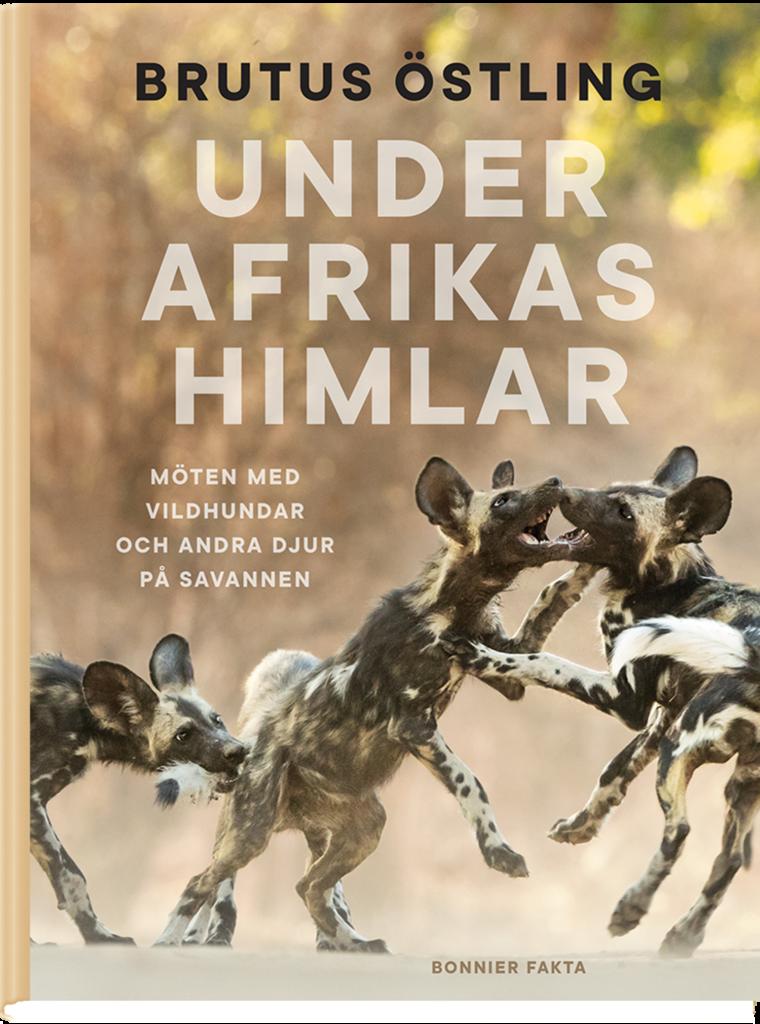 Årets Pandabok 2019 - Under Afrikas himlar