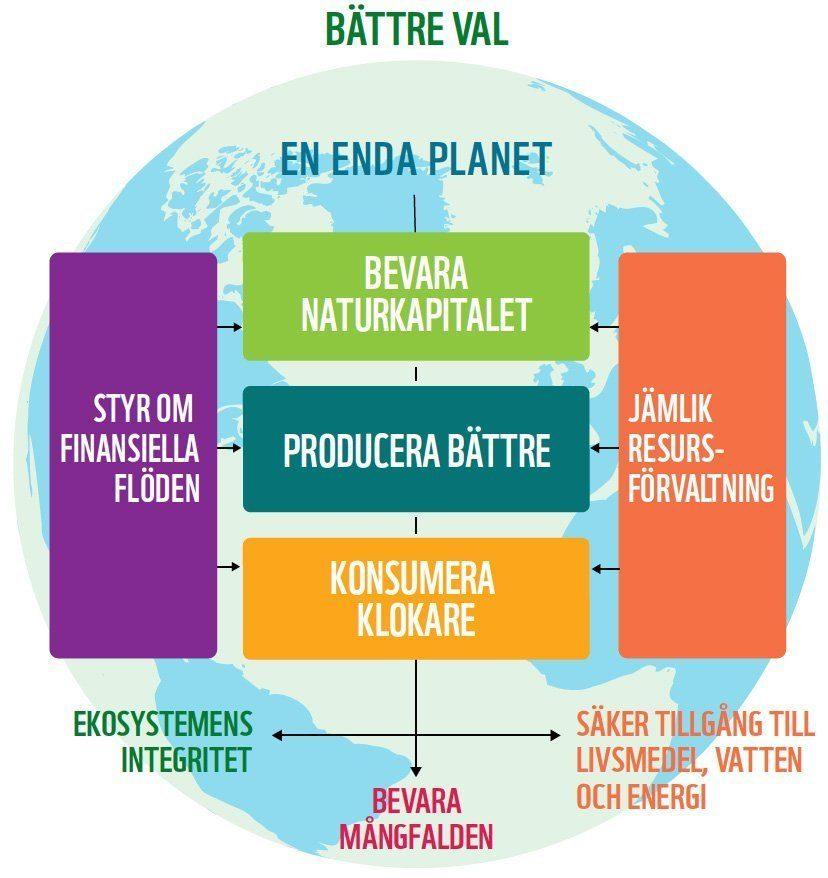 Källa: Living Planet Report, svensk sammanfattning, 2014