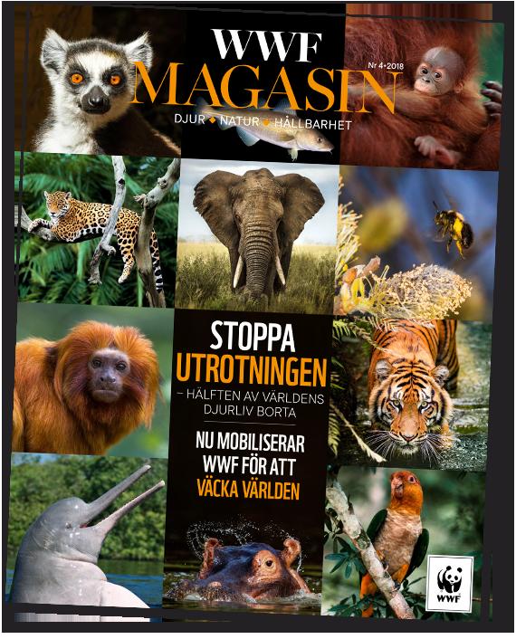 WWF Magasin Nr 4 2018