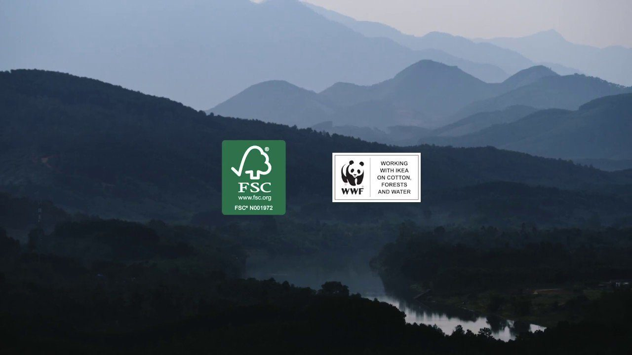 IKEA's work on responsible forest management
