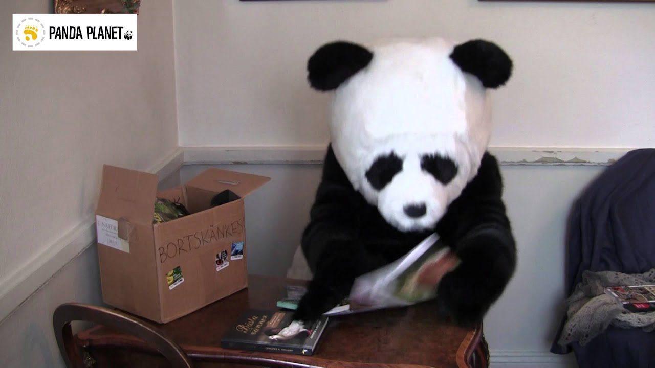 Pandafilmen Börsen
