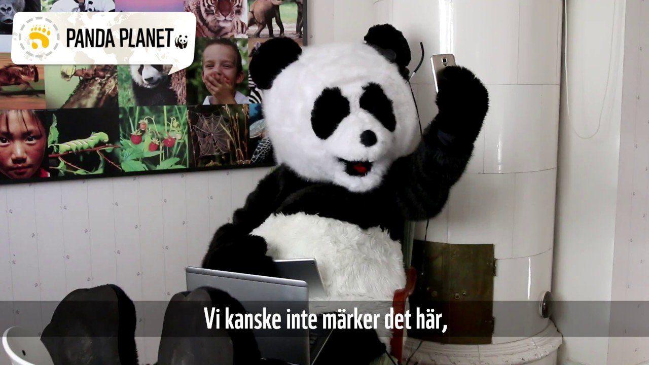 Pandafilmen om en rättvis värld - med tre utmaningar till DIG!