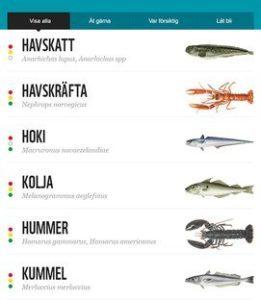 Fiskguiden