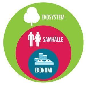 Ekonomin behöver fungera som ett verktyg för en hållbar samhällsutveckling inom ramen för de planetära gränserna och en planet. Källa: Living Planet Report, svensk sammanfattning, 2014