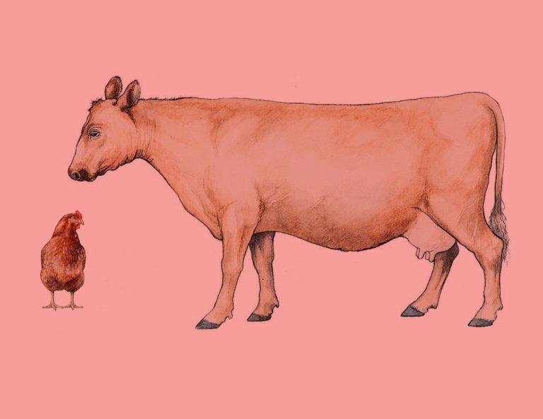 äta kött miljöpåverkan