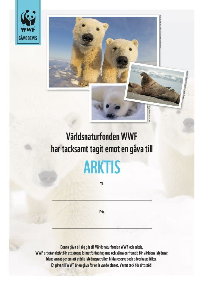 WWF Gåvobevis Arktis