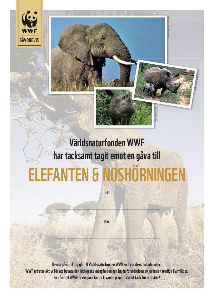 WWF Gåvobevis Elefant & Noshörning