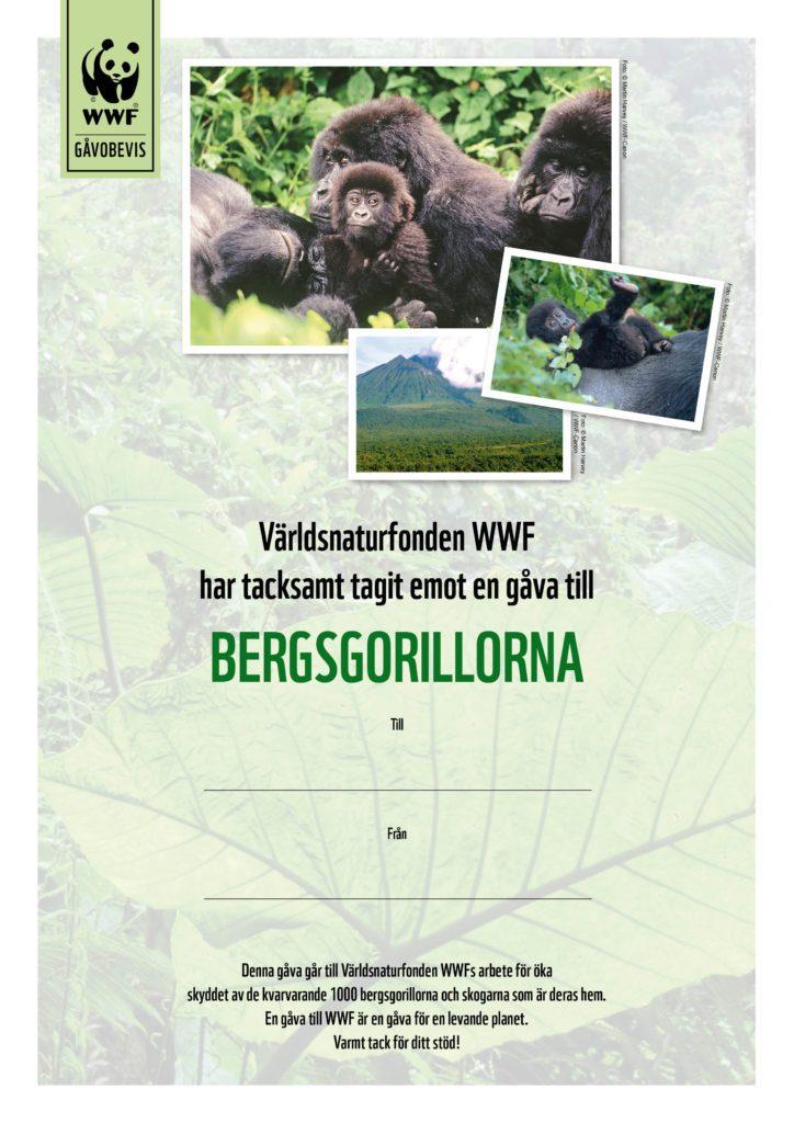 WWF Gåvobevis Bergsgorilla