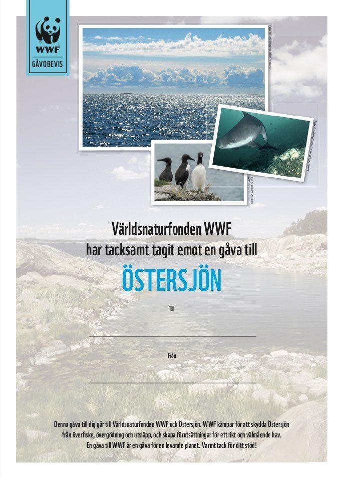 WWF Gåvobevis Östersjön