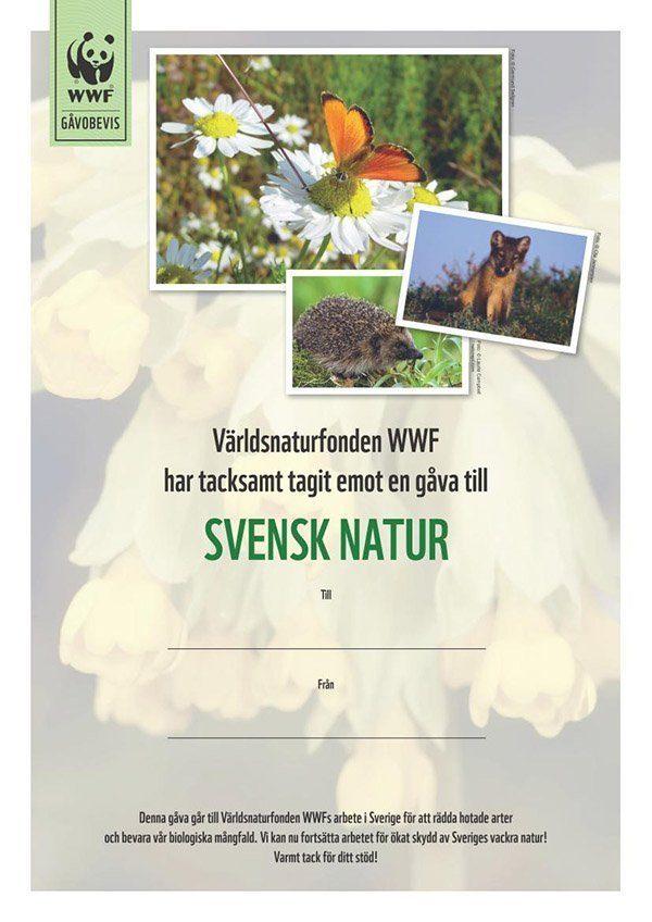 WWF Gåvobevis Svensk natur
