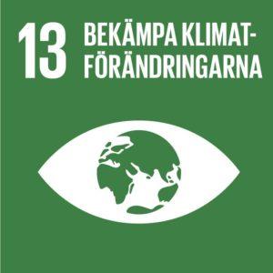 Mål 13 – Bekämpa klimatförändringarna