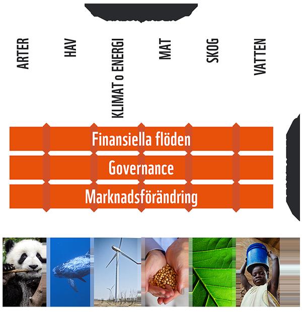 Målområden och drivkrafter WWF