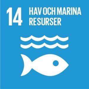 Mål 14 – Hav och marina resurser