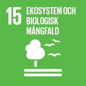 Mål 15 – Ekosystem och biologisk mångfald