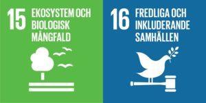 Globala mål 15 och 16
