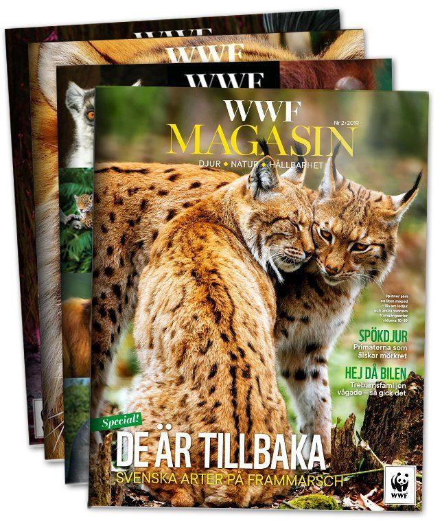 WWF Magasin 4 nummer per år